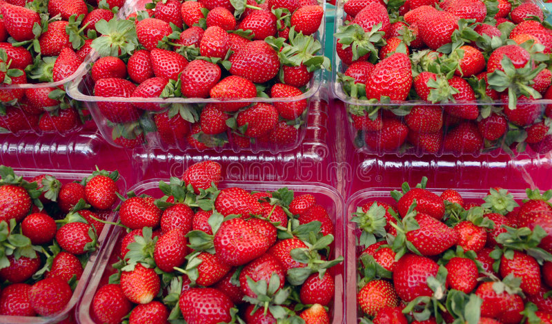 Strawberrys au marke photos libres de droits