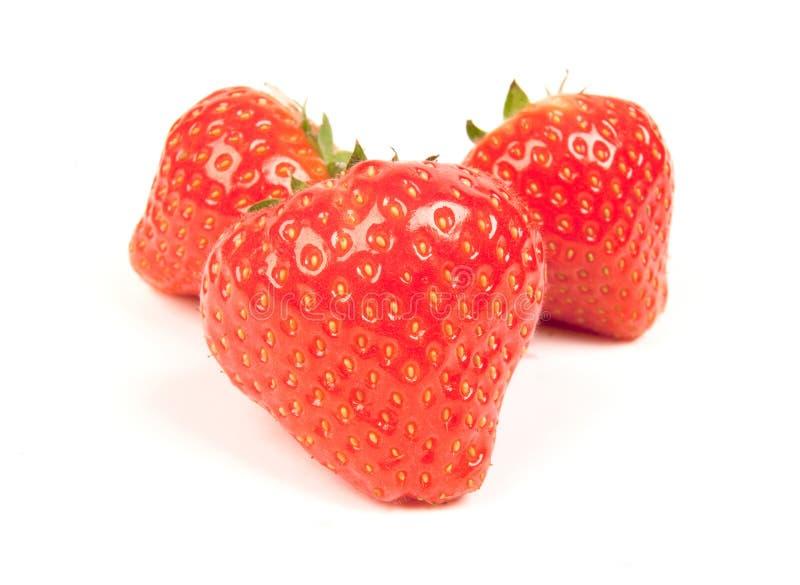 Strawberrys auf Weiß lizenzfreies stockfoto