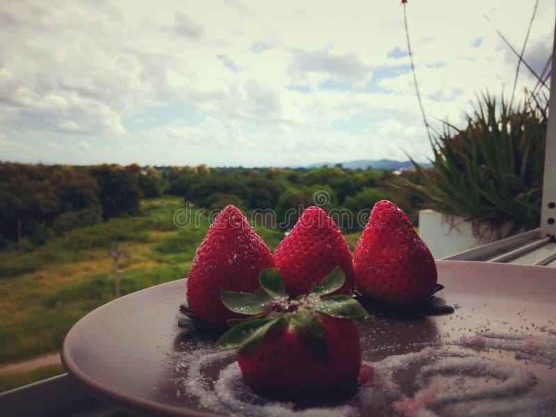 Strawbery στη μνήμη στοκ εικόνες
