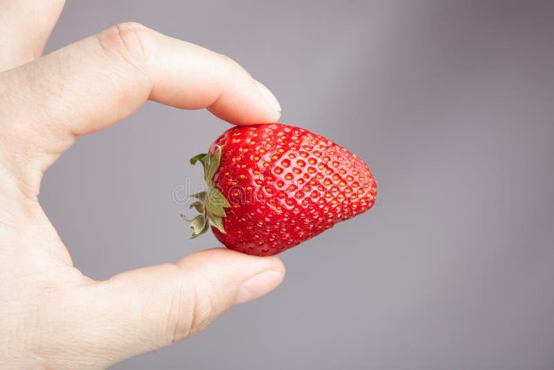 Strawbery frais photo libre de droits