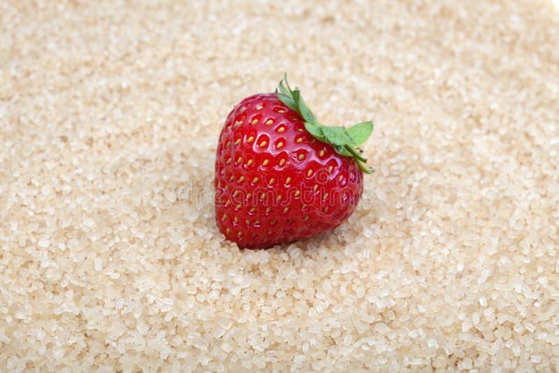 Strawbery fresco en el fondo blanco imagen de archivo