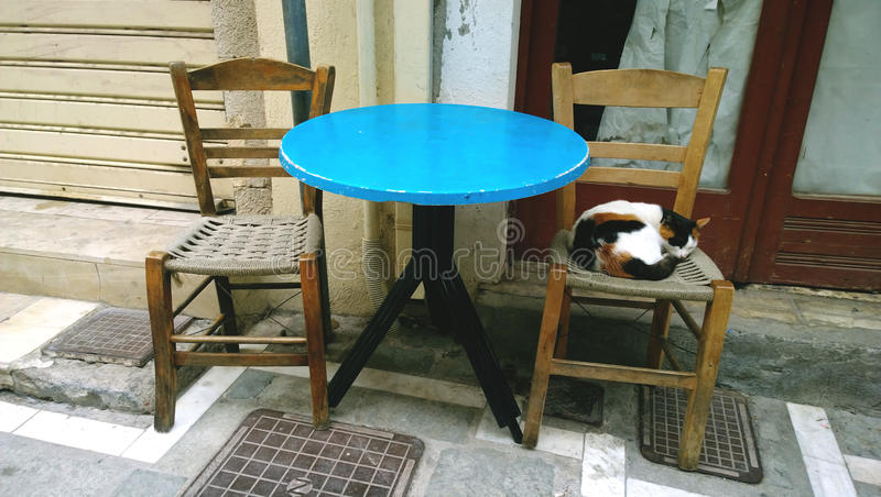 A stray cat lies on a chair near a coffee shop. The historic centre of Rethymnon on the island of Crete stock photo