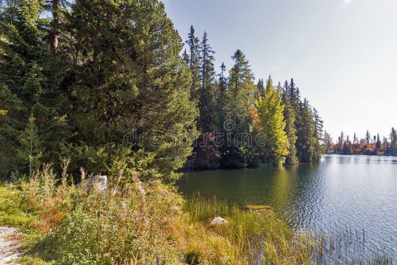 Strbske jeziora krajobraz w Sistani fotografia stock