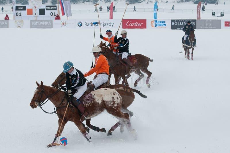 STRBSKE PLESO, SLOVAKIA - FEBRUARY 7: Polo on snow royalty free stock images