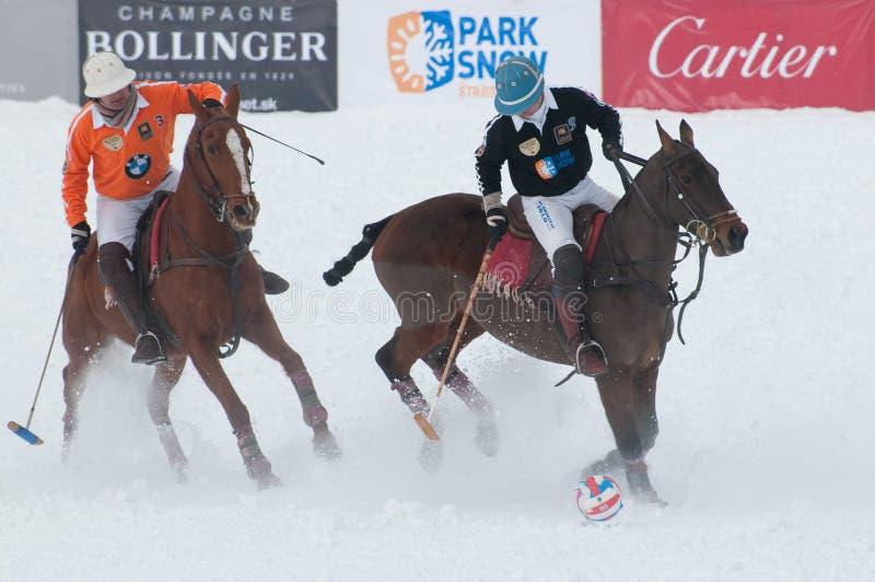 STRBSKE PLESO, SLOVAKIA - FEBRUARY 7: Polo on snow stock photo