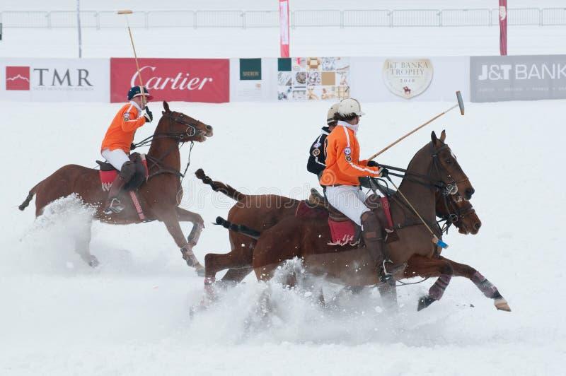 Download STRBSKE PLESO, SLOVAKIA - FEBRUARY 7: Polo On Snow Editorial Stock Image - Image of horse, ardour: 12930429
