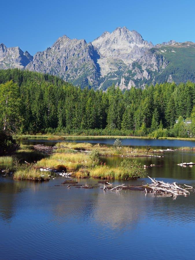 Download Strbske Pleso In Slowakischem Hohem Tatras Am Sommer Stockfoto - Bild von teich, alpin: 26353408