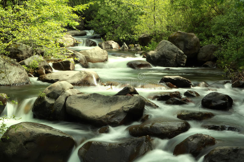 Download Stream stock photo. Image of forest, adventure, leisure - 15166332