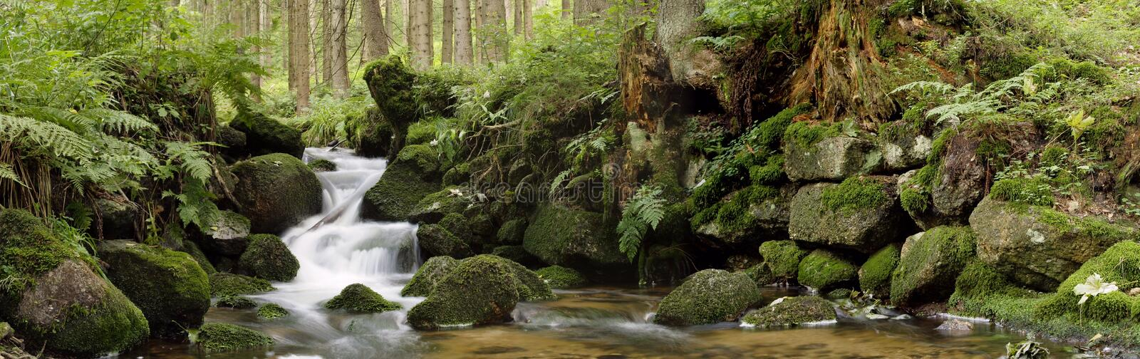 Stream. Of protected landscape area Nancy stock photo