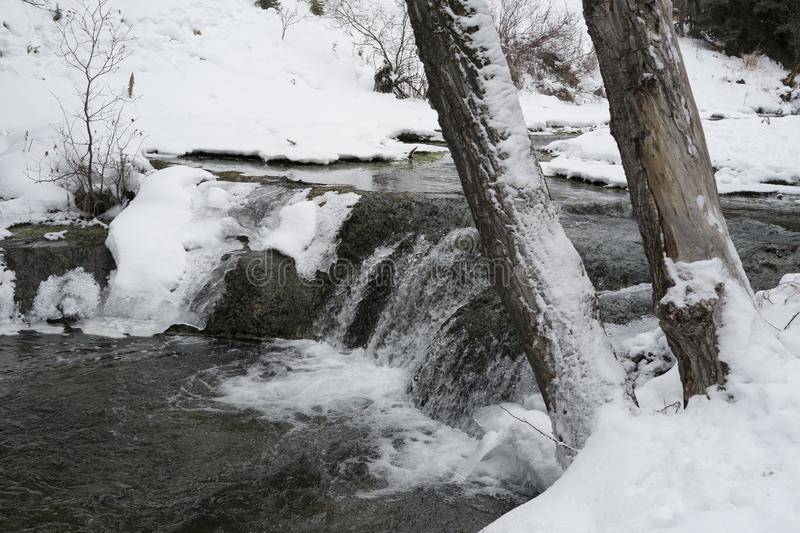 Big Hill Springs Provincial Park stream in winter. Stream adjacent to hike in Big Hill Springs Provincial Park in Alberta in the winter with snow royalty free stock images