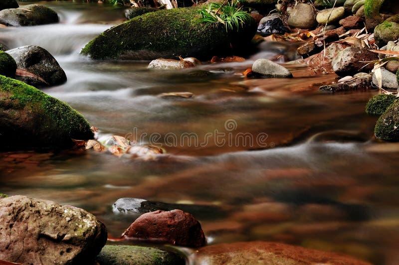 The stream stock image
