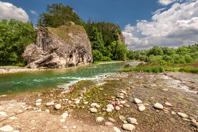 Stream Bialka in the pieniny mountains in sunny day, Poland. Europe royalty free stock images