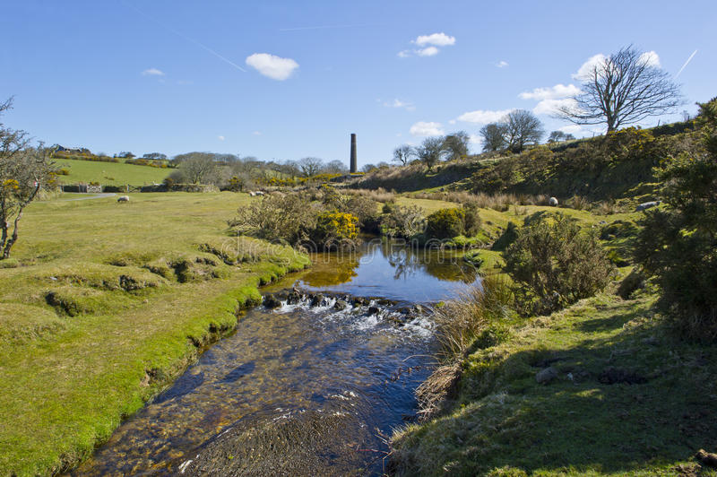 Stream on Bodmin Moor royalty free stock photo