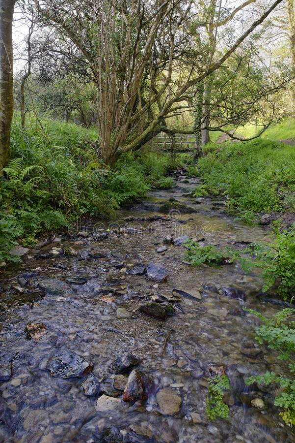 Stream & Bridge. In Kinever Valley leading to Bennetts Mouth, Bull Point, North Devon, UK stock photo