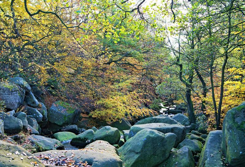 Stream through Burbage Brook, in Padley Gorge, Grindleford, East Midlands. Taken to capture the rich autumnal colours surrounding large and mossy rocks, in stock photos