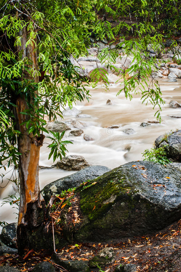 Stream of Chamang Fall. View of quick flowing stream from Chamang Waterfall in Bentong, Pahang royalty free stock photos