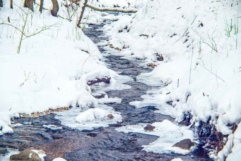 Stream flowing in winter forest royalty free stock photography