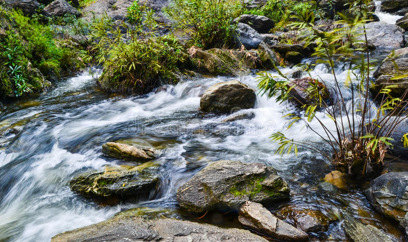 A stream that flows down from the waterfall. stock photos