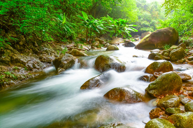 Stream in the forest. The stream is a form of natural streams in the water. In the Garden River built on both sides of the Taiwan Straits rocky, river water and royalty free stock photo