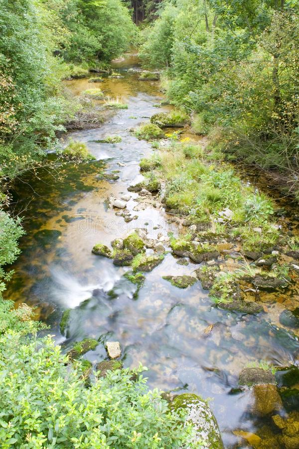 Download Stream in the Green stock image. Image of nant, flume - 6238793