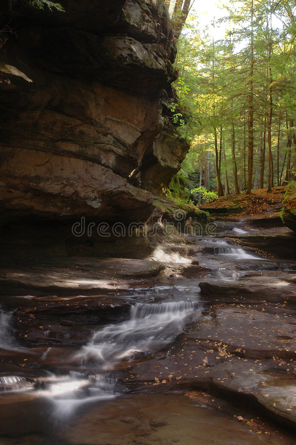 Stream III. Color photo of a small stream in a forest royalty free stock photography