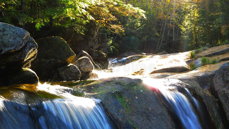Stream and Light in Autumn royalty free stock photos