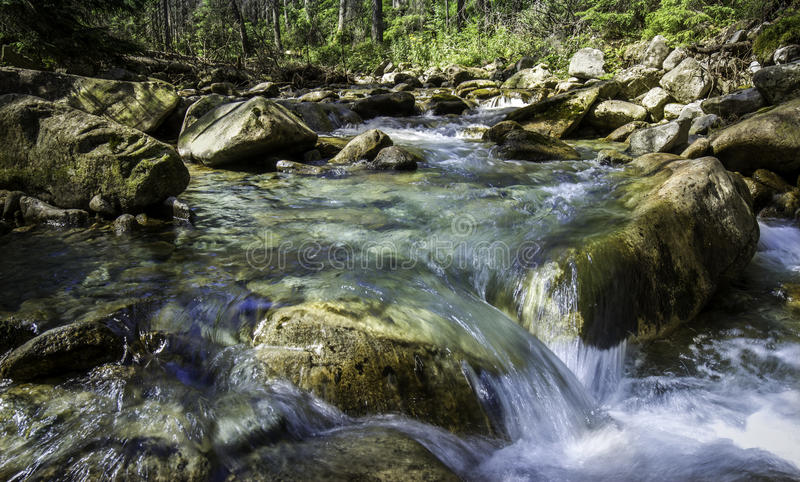 Stream in the mountains royalty free stock photos