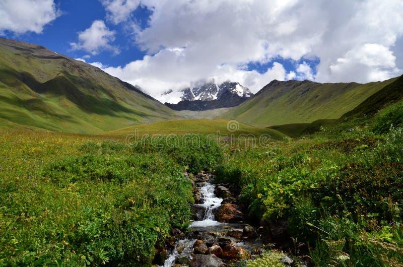Stream in the mountains stock photos