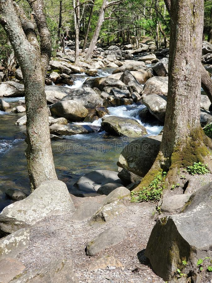 Stream in the Mountains stock image
