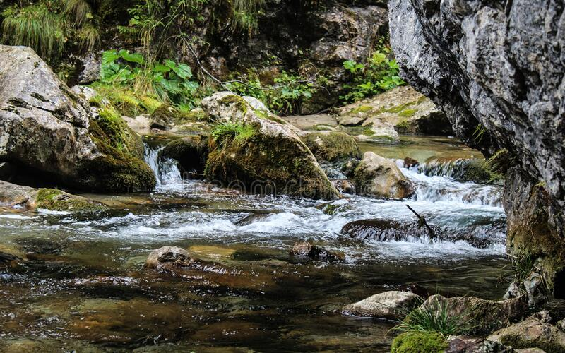 Stream In The Mountains Free Public Domain Cc0 Image