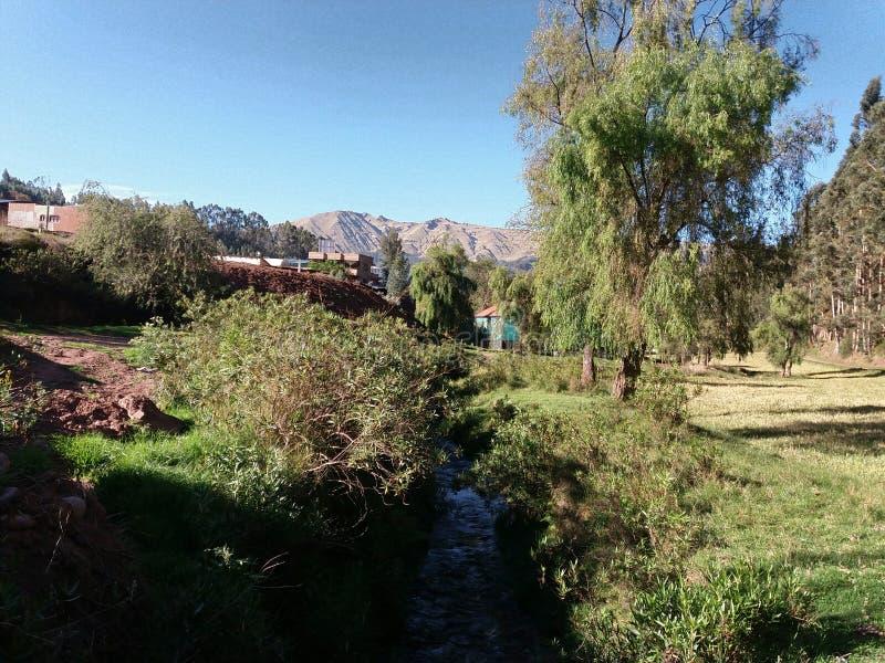 Stream near trees. And green grass, blue sky background, location san jeronimo, cusco, peru stock image