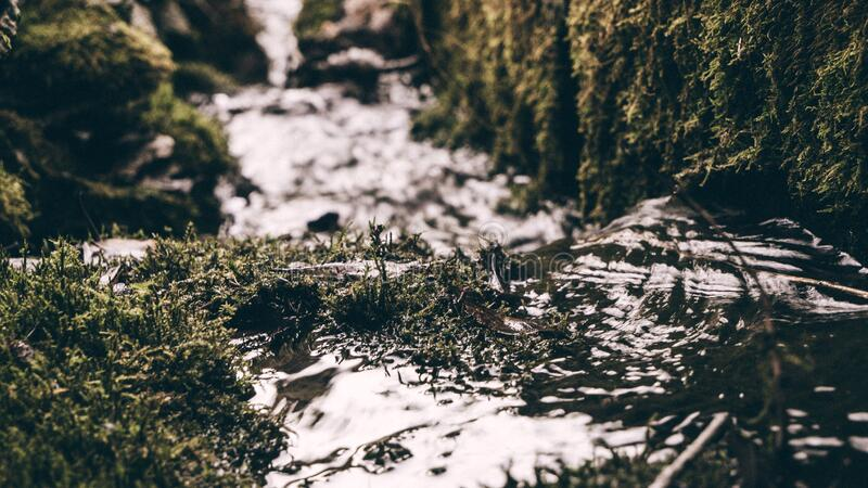 Stream passing mossy rocks stock photography