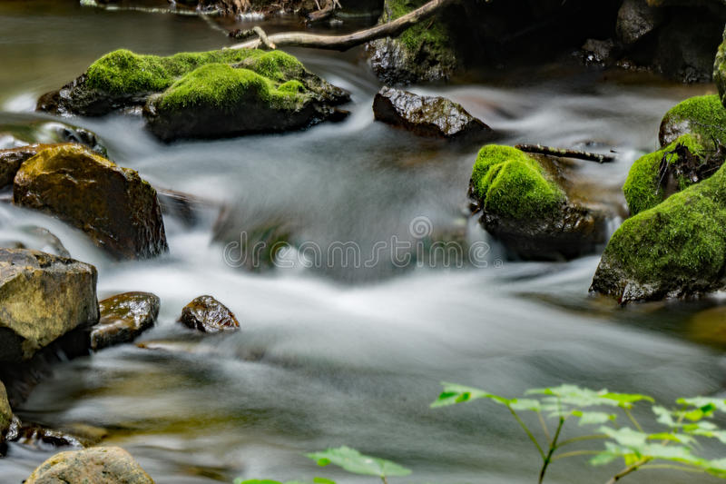 Stream, Rocks and Moss - 3 royalty free stock images