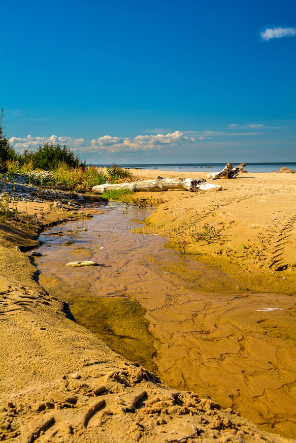 Stream by the sea stock image