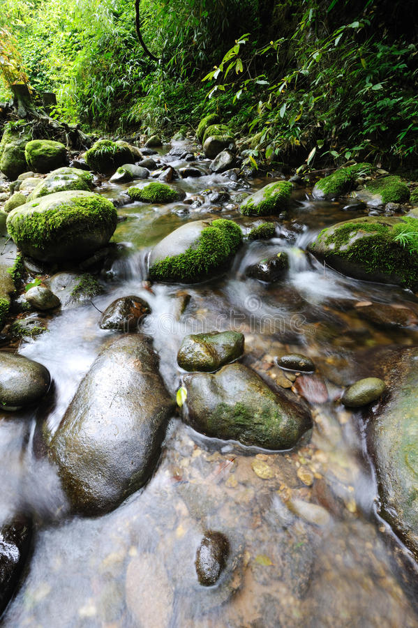 Stream With Stone Royalty Free Stock Photos