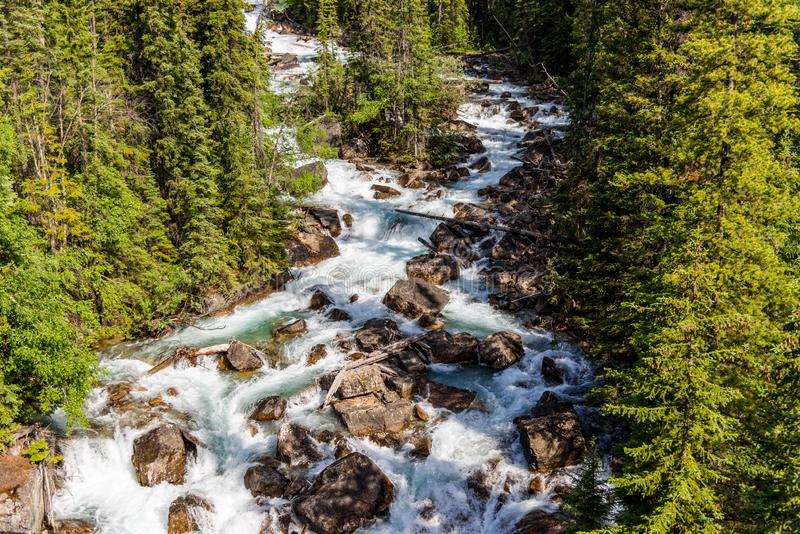 Stream view at Banff National Park stock image