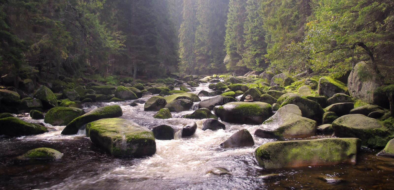Stream Of Vydra River Royalty Free Stock Photography