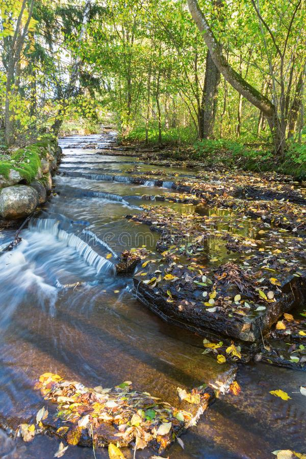 Stream with water flowing over shale stone in the forest stock image