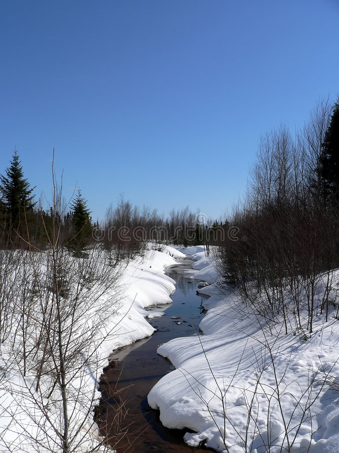 Stream in Winter royalty free stock photography