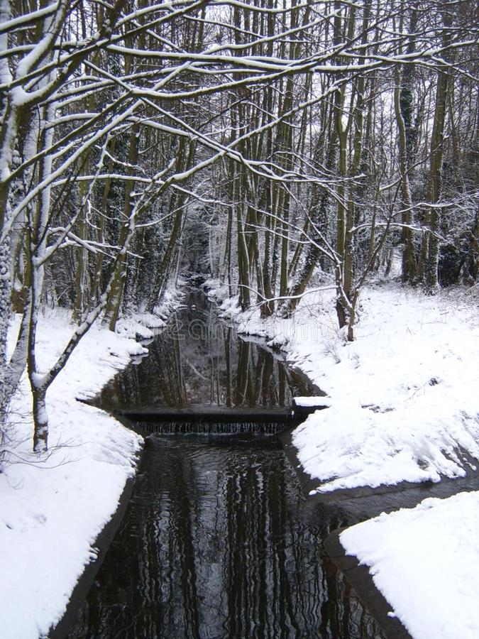 Stream in winter royalty free stock photos