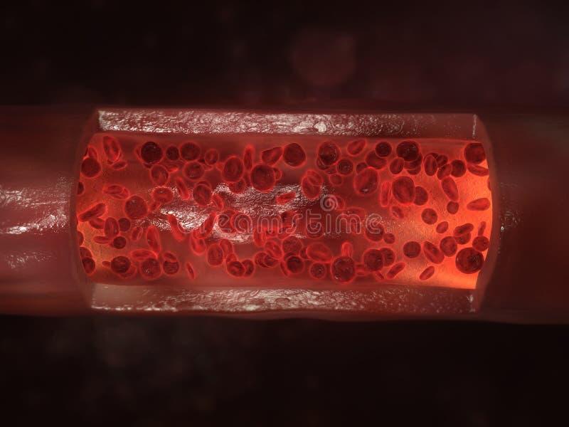 Streaming blood cells stock illustration