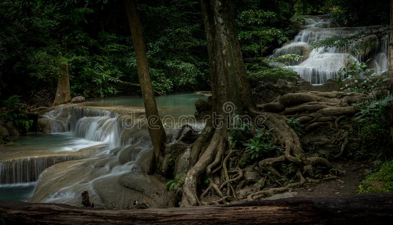 Streaming com a Natureza imagens de stock