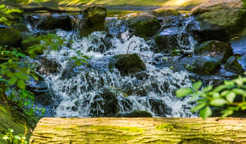 Streaming water over rocks in closeup, beautiful garden architecture, nature background of a tiny waterfall royalty free stock photography
