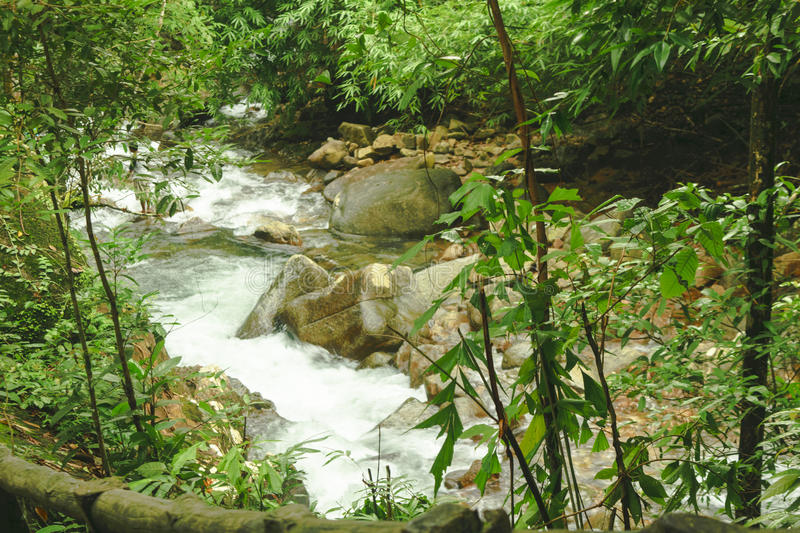 Streams. The streams flowing from waterfall royalty free stock photography