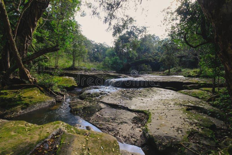 streams stock photo