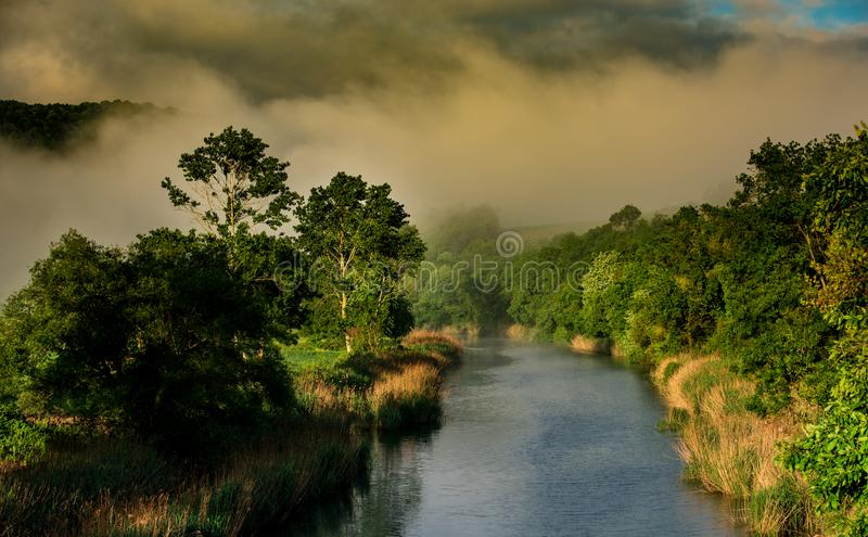 Streams and trees at sunset. Streams and trees at sunrise - background is fog royalty free stock images