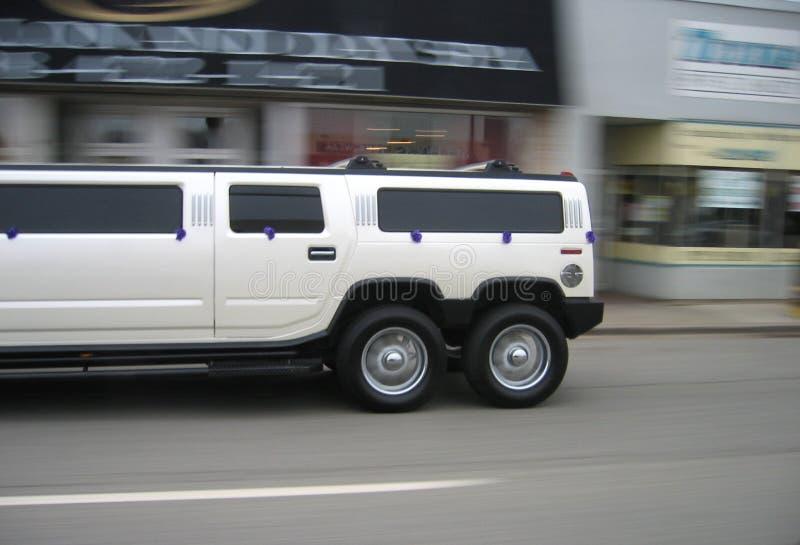 Strech Hummer royalty-vrije stock foto's
