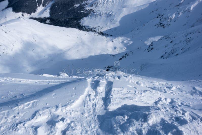 Streek van Chopokfreeride, freeride die, Jasna, Lage Tatras, Slowaak de ski?en stock fotografie