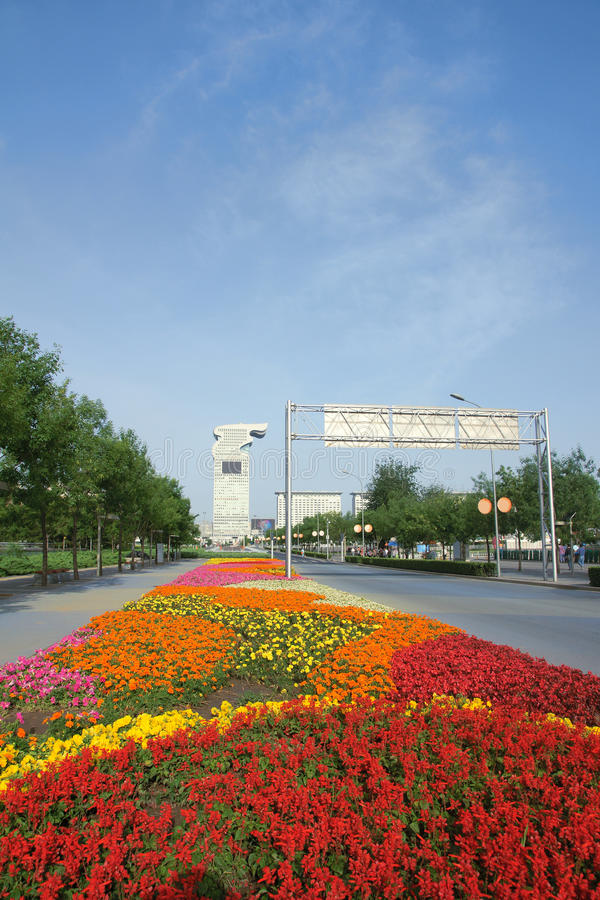 Download Street stock image. Image of road, flower, buildings - 25010305