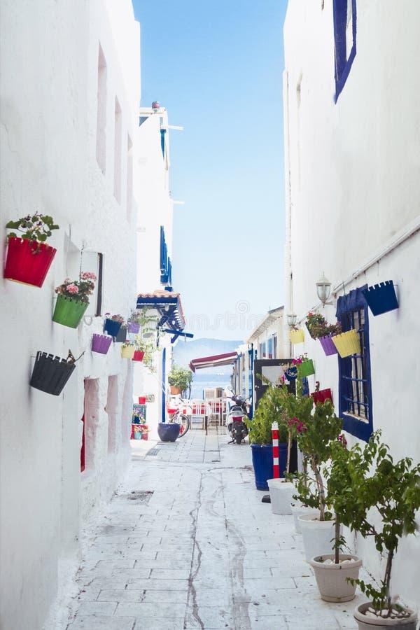 A street in Bodrum / Turkey. A street in Bodrum at summer / Turkey royalty free stock photos